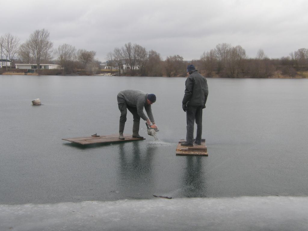 frozen Water Timbersports